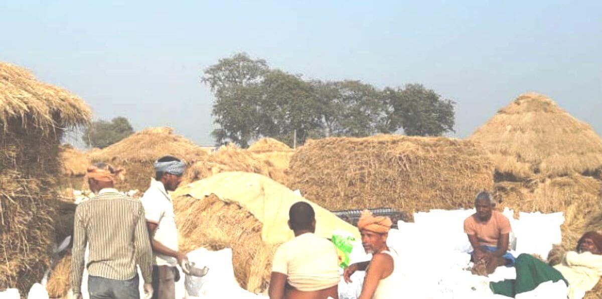 nalanda darpan kheti bari news village – Nalanda Darpan / नालंदा दर्पण : गाँव-जेवार की बात। – गाँव-जेवार की बात।