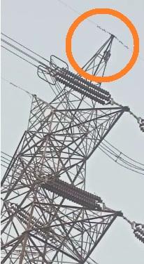 A deranged young man climbed over 1.33 lakh voltage pole and made a big gimmick like this 2 – Nalanda Darpan / नालंदा दर्पण : गाँव-जेवार की बात। – गाँव-जेवार की बात।